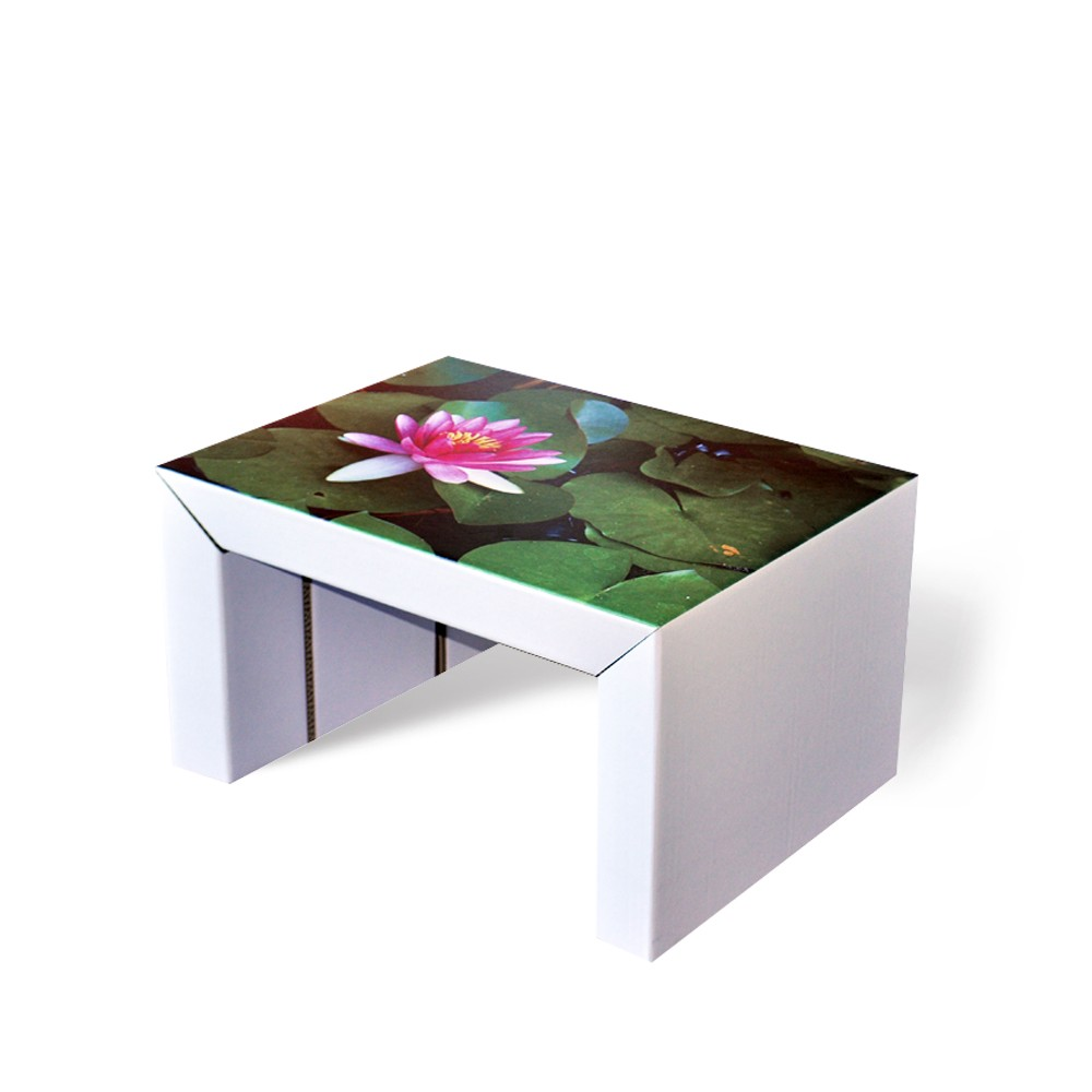Table basse cozus